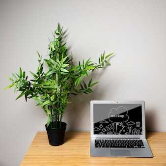 Laptop device mock-up next to plant