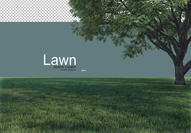 자연 한가운데에 잔디와 큰 나무
