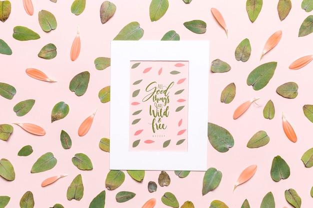 흰색 프레임으로 나뭇잎과 꽃잎