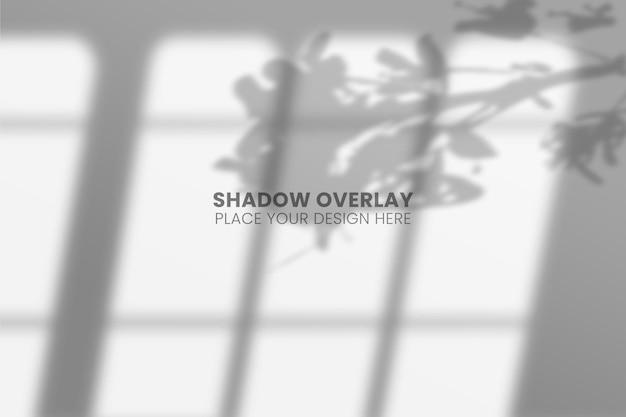 Листья и окно shadows overlay effect прозрачная концепция