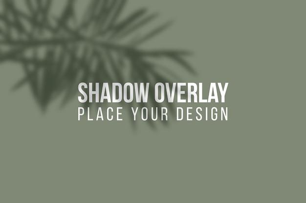 나뭇잎 그림자 오버레이 및 창 그림자 오버레이 효과 투명 개념