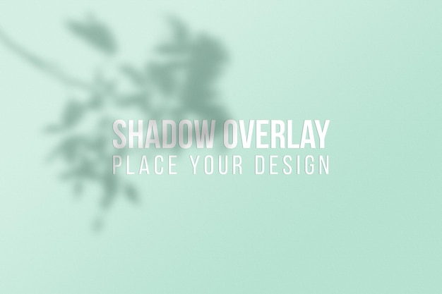Leaves shadows overlay effect transparent concept