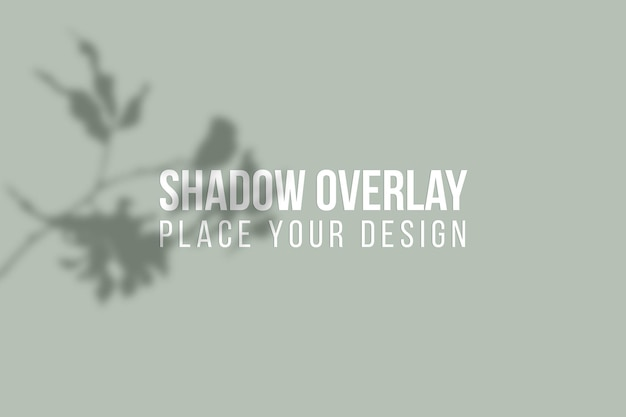 Leaves shadows overlay and window shadows overlay effect transparent concept