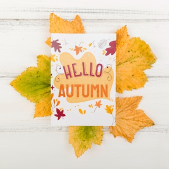 Leaves with hello autumn season message