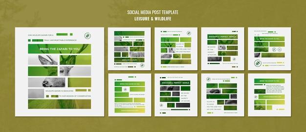 레저 및 야생 동물 소셜 미디어 게시물