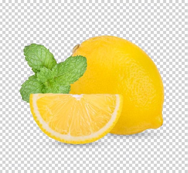 고립 된 잎과 레몬 과일