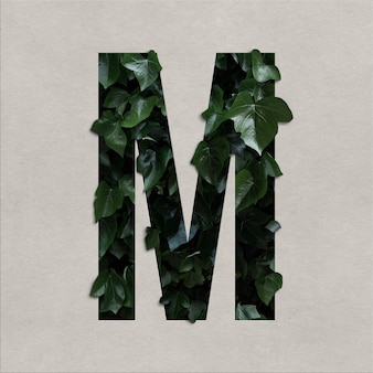 Letter m alphabet concept with hedera