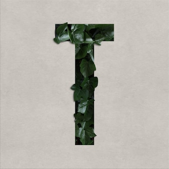Letter t alphabet concept with hedera