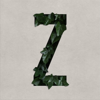 Letter z alphabet concept with hedera