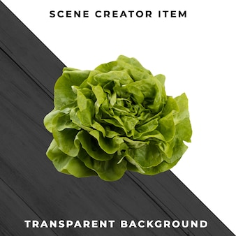 Lettuce isolated with clipping path.
