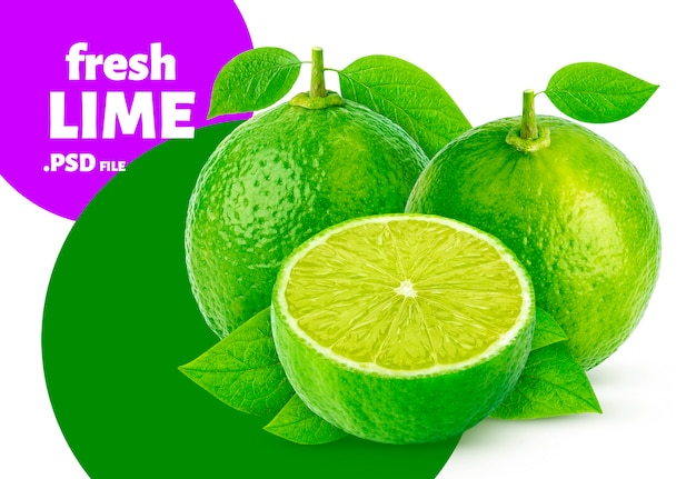 Lime fruits banner