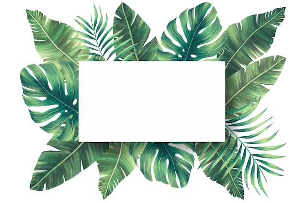 Tropical Border Images Free Vectors Stock Photos Psd 40 high quality collection of tropical leaves clipart by clipartmag. tropical border images free vectors