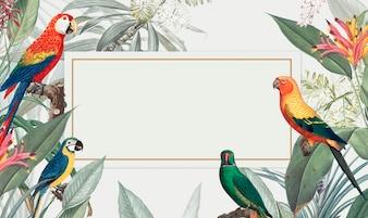 Ара тропический макет иллюстрации