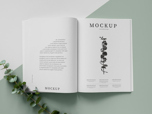 Magazine and plant mockup top view