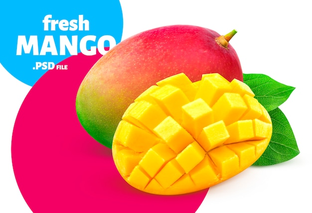 Mango isolated, fruit design for packaging