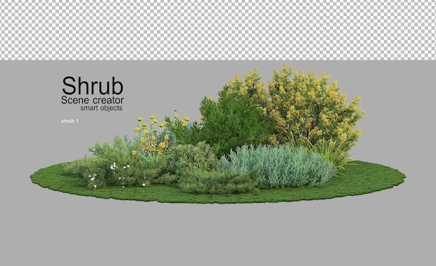 Many shrubs and flowering plants in a small garden