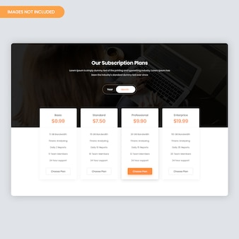 Minimal pricing table for website