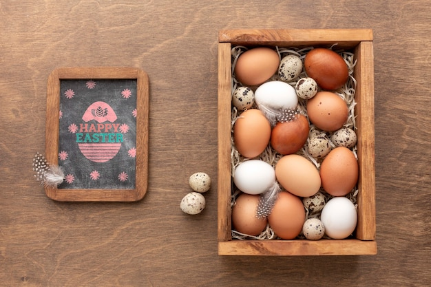 Mock-up eggs and frame