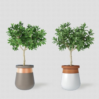 Mockup of 3d rendered plants in pots