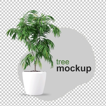 Мокап 3d-рендеринга растения в горшках
