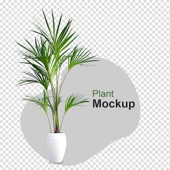 냄비에 3d 렌더링 된 식물의 모형