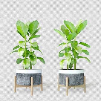 Макет 3d-растений в горшках