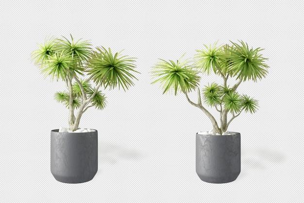 Мокап 3d-рендеринга растений в горшках