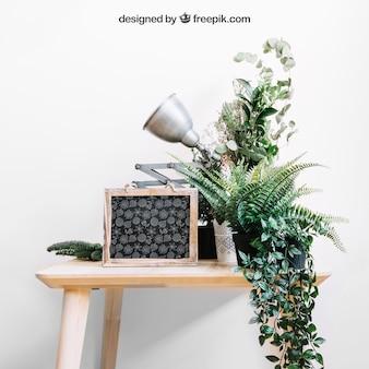 슬레이트와 테이블에 식물의 모형