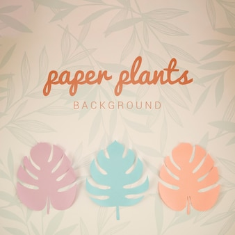 Monstera paper plants background top view