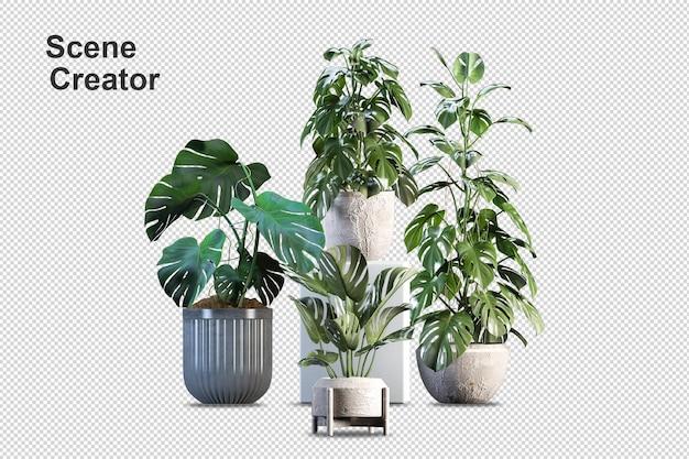 Растение монстера в горшке в 3d-рендеринге Premium Psd