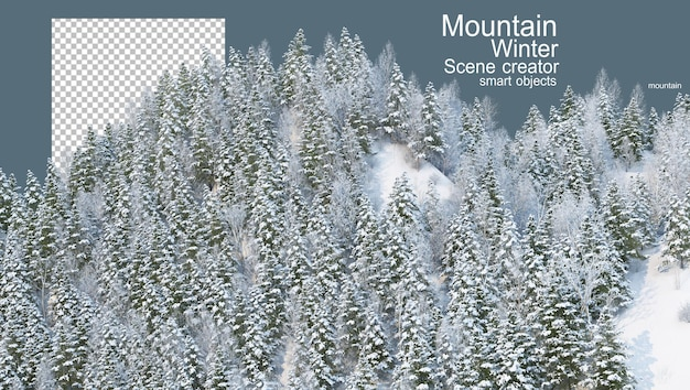 Mountains with pines in winter