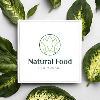 Макет натуральной пищи с листьями