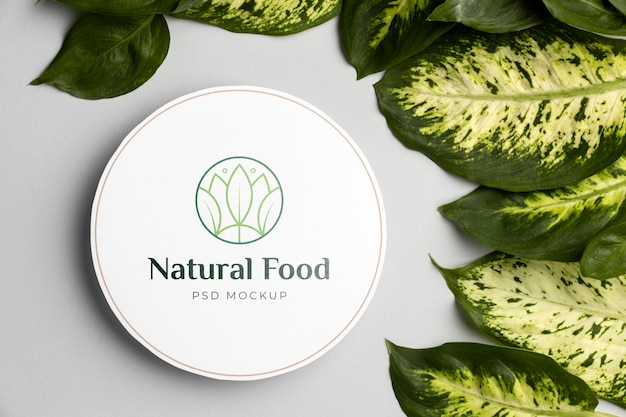 Natural food mock-up with leaves