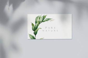 Nature business card mockup