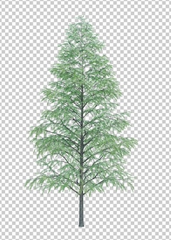 Nature object tree isolated  white  space
