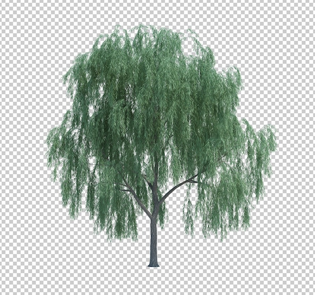 Nature object tree isolated on white