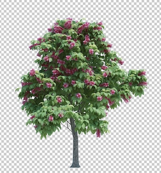 Nature object tree isolated