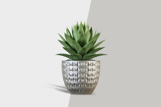 分離された自然オブジェクトツリー植物