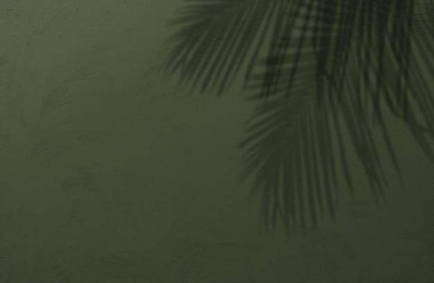 그림자 종려 잎의 자연 여름 배경