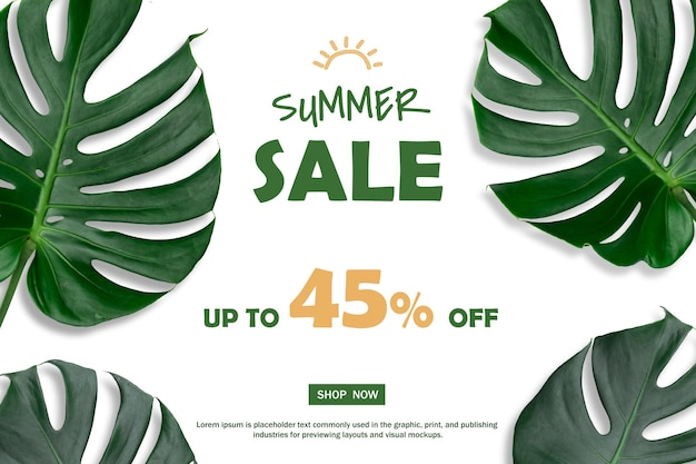 Monstera 잎의 자연 여름 판매 배경