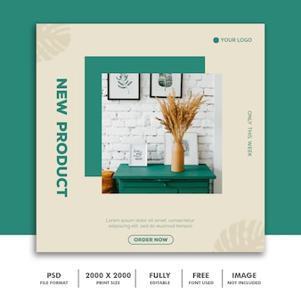 New product social media post template