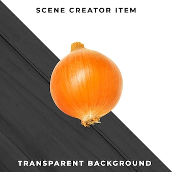 Onion isolated with clipping path.