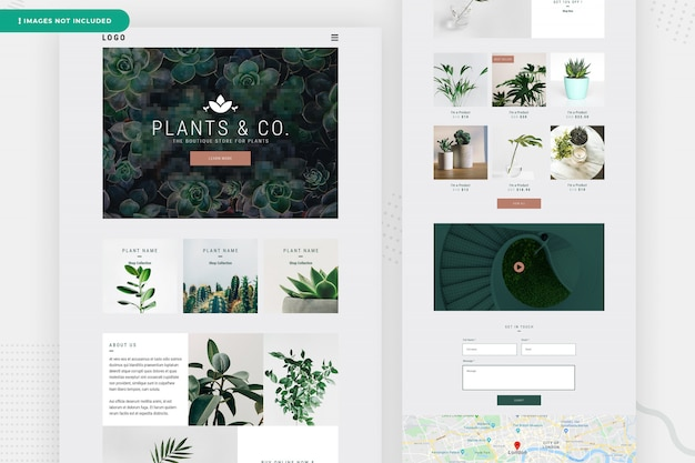 Online plant website page design