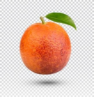 Апельсиновая кровь с изолированными листьями