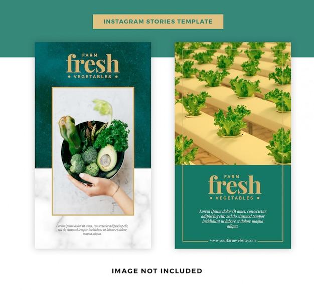 유기농 신선한 야채 소셜 미디어 스토리 템플릿