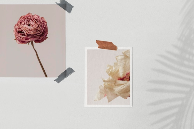 Paper collage mockup psd on the wall