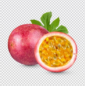 열정 과일; passiflora edulis 절연 프리미엄 psd