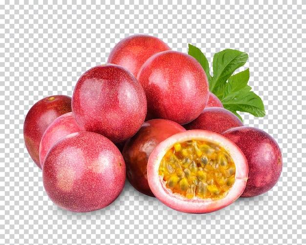 패션프루트; passiflora edulis 절연 프리미엄 psd