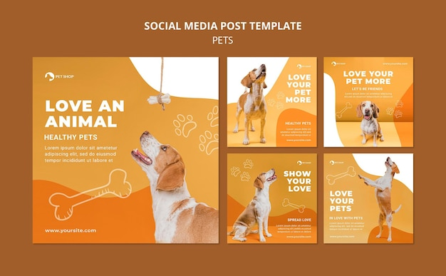 Pet shop instagram posts template