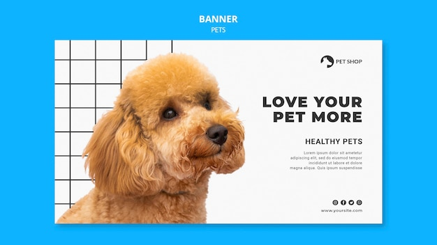 Pets banner template with photo